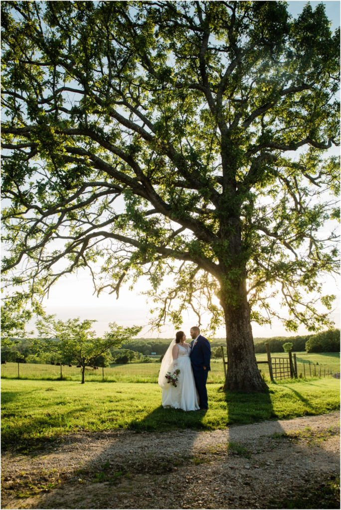Bride and Groom standing next to huge oak tree at sunset